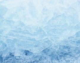 Poslali jsme poplatky i provize k ledu. Akce platí do konce roku.